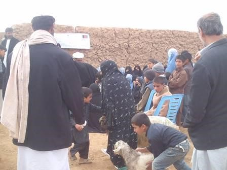 Strengthening livelihoods for vulnerable and female headed households in Herat Province