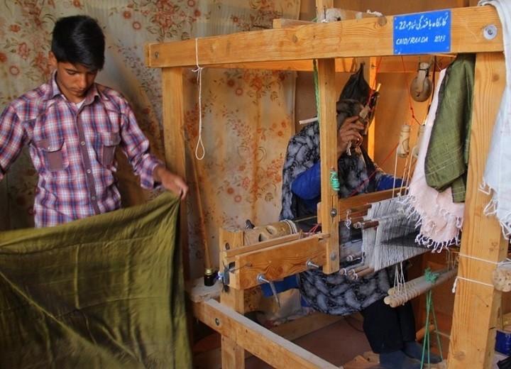 Improving Sericulture in Herat